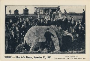 pages-14-16-elephants-figure-08-death-of-jumbo
